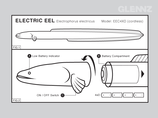 This Electric Eel Is Also Cordless