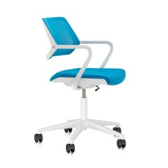 Aqua Desk Chair Lift Chairs Covered By Medicaid Pool Blue Qivi Modern Office Furniture Poppin