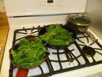 Grilling Broccoli Rabe
