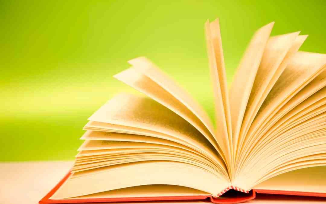 "Book Study: Anne Lamott's ""Traveling Mercies"""