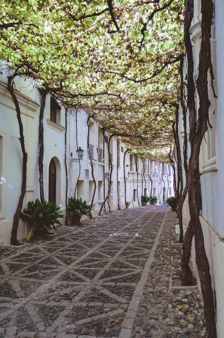 Bodega Gonzalez Byass, Jerez de la Frontera, Hiszpania, Andaluzja