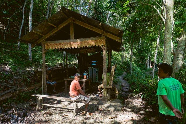 karaoke w samej dżungli :-)