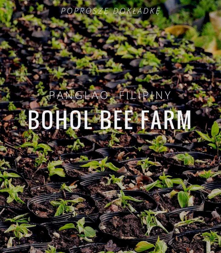 Bohol Bee Farm, Panglao, Bohol - okladka