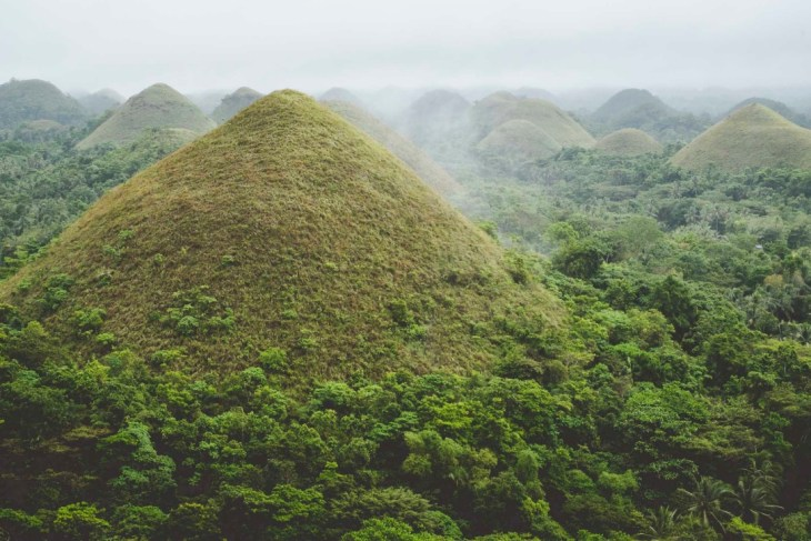 Czekoladowe Wzgórza skąpane we mgle