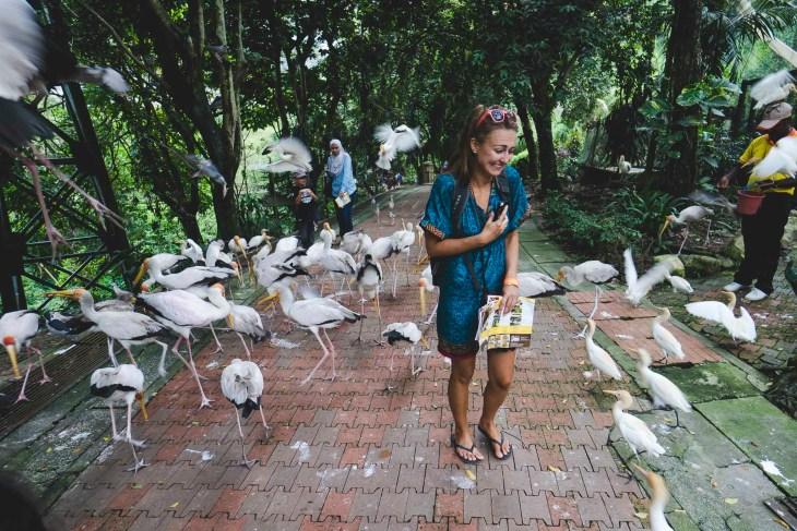 spacer z ptakami? proszę bardzo :-)