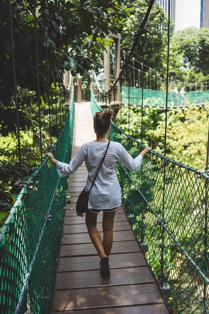 kawałek deszczowego lesu w miejskiej dżungli, daje do myślenia