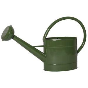 grüne Gießkanne
