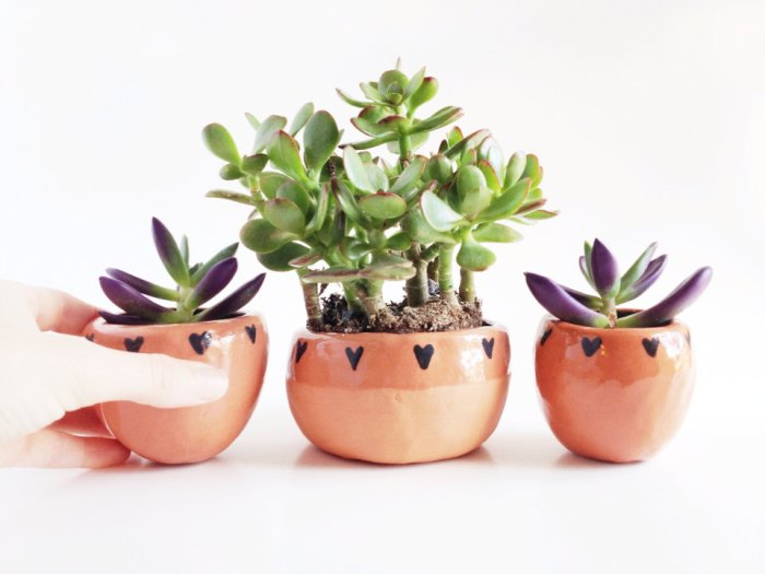 Terra Cotta Planter with Hearts 3 | Terrarium Containers