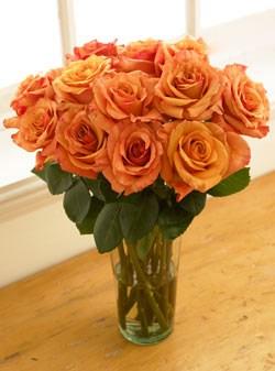 organicbouquet rose organic flowers