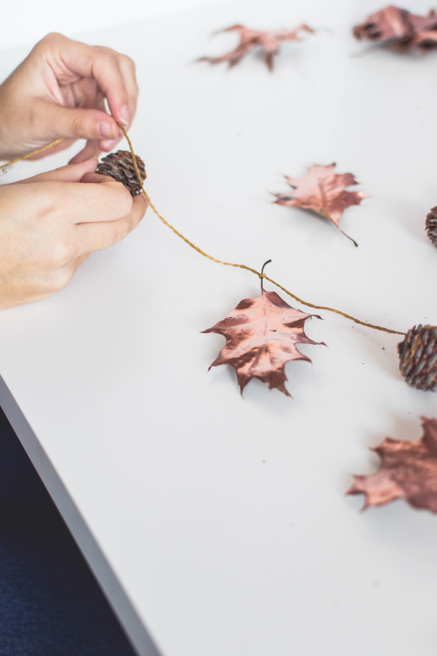 Create an Autumn garland with pinecones and leaves