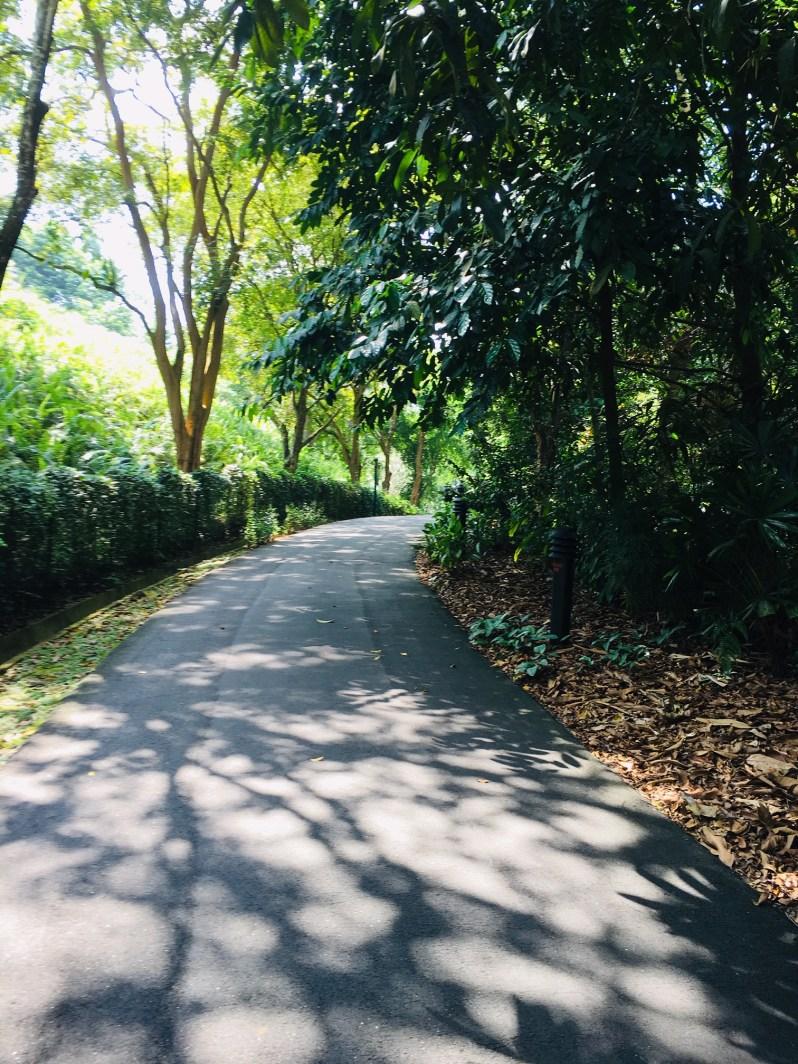 PopsicleSociety_Singapore Botanic Garden3