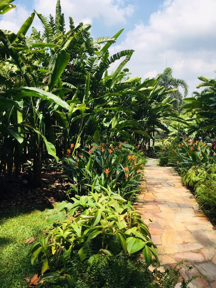 PopsicleSociety_Singapore Botanic Garden5