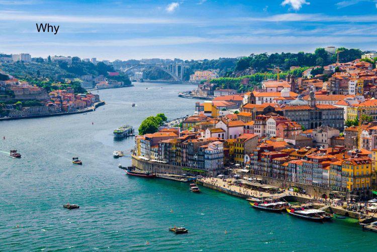 Popsicle Society_Porto Portugal_Why