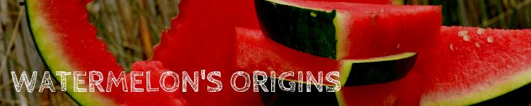Watermelon origin_Popsicle Society