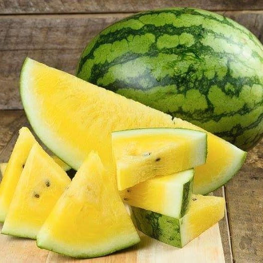 yellow watermelon_Popsicle Society