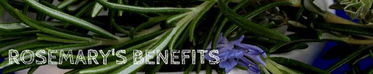 Benefits rosemary_Popsicle Society