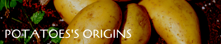 Potatoes origins_Popsicle Society