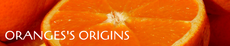 Oranges origins_Popsicle Society