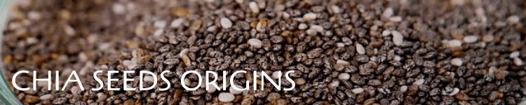Chia seeds origins_Popsicle Society