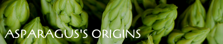 Asparagus origins_Popsicle Society