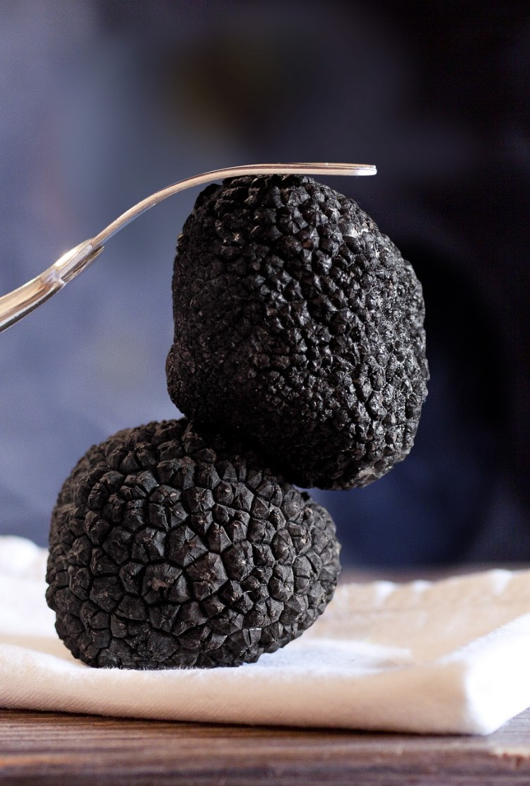 Black truffle_popsicle Socidety