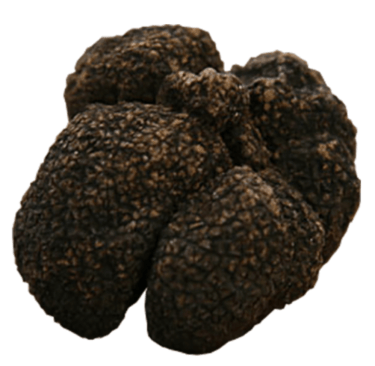 Smooth black truffle