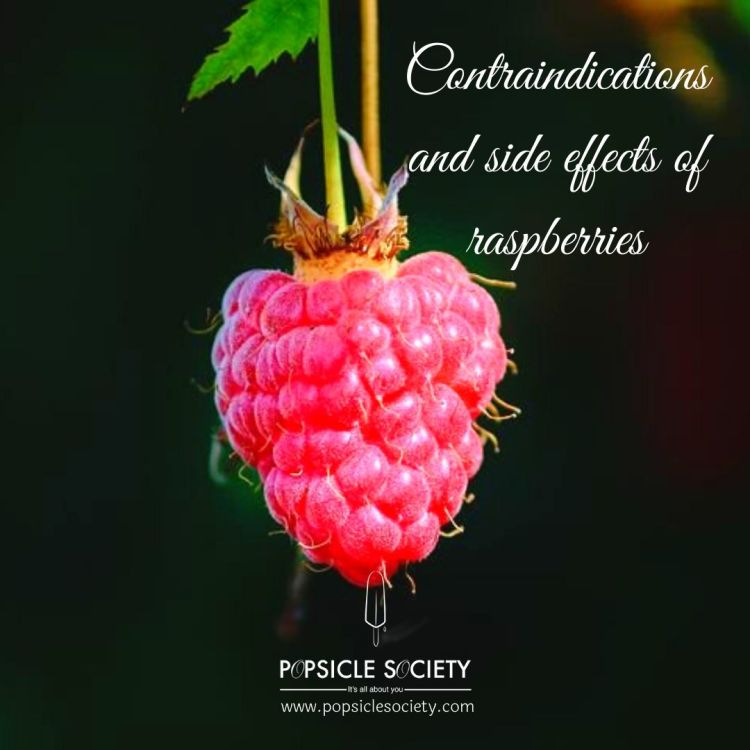 Contraindications and side effects of raspberries_Popsicle Society
