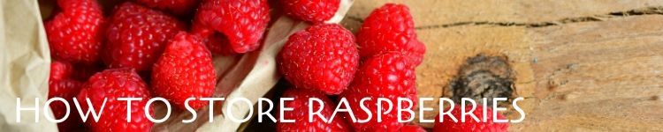 How to store raspberries_Popsicle Society