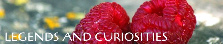 Legends and curiosities raspberries_Popsicle Society