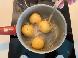 PopsicleSociety-german potatoes salad_7734D