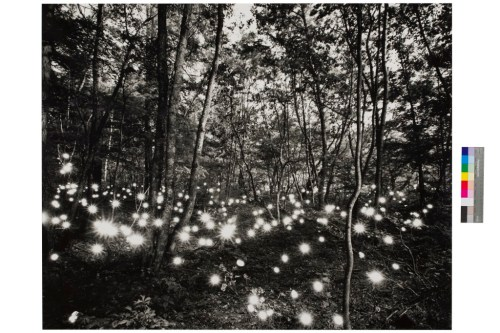 Tokihiron Sato, 'Kashimagawa #352'. 1998. Deutsche Bank Collection