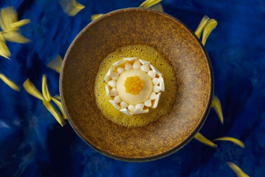 Blooming Passion Fruit - Coconut Mousse