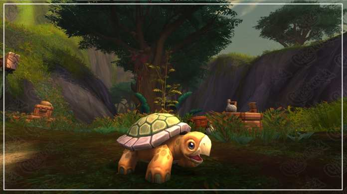 WoW pets: The Cou'pa | Sausage Roll