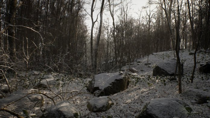 Footage from Procedural Forrest Unreal Engine 4 asset.