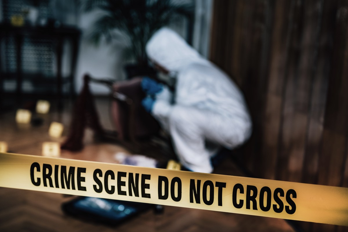 Investigations drive our interest in true crime stories