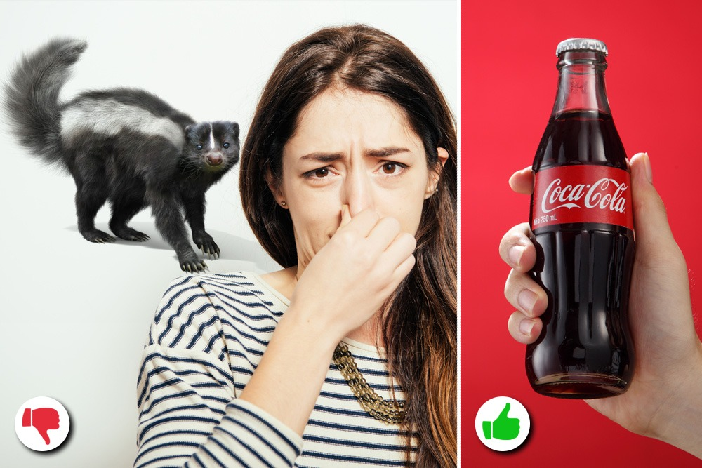 10 Amazing Uses You Never Knew About for Coca-Cola - Coca-Cola Used as Odor Neutralizer