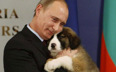 10+ Times Vladimir Putin Looked Sweeter Than You