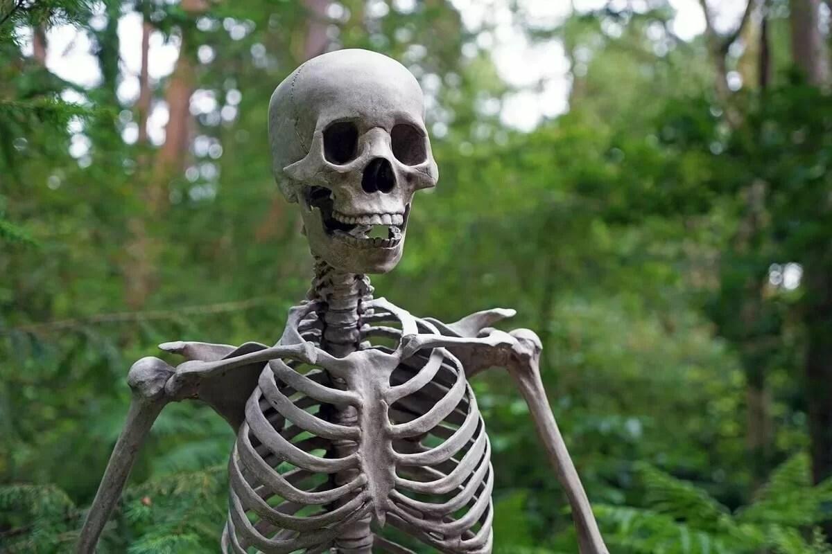Созданы улучшенные полимеры для замены костей