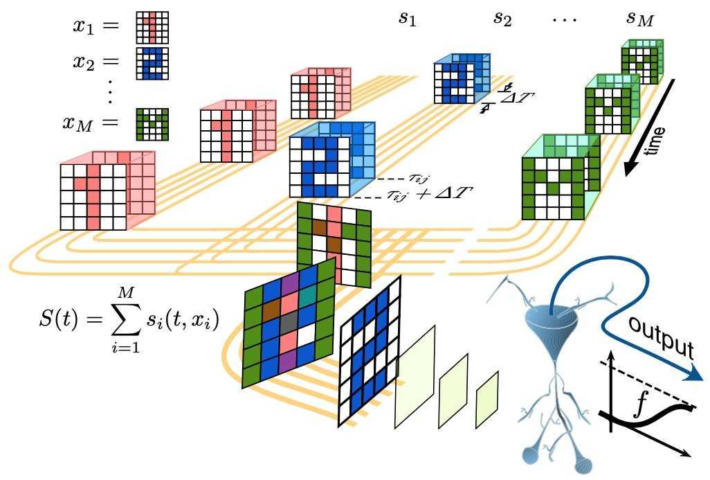 Математики предсказали мозговые клетки, отвечающие за абстрактные понятия