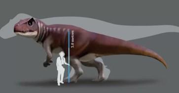 В Австралии нашли гигантского хищного динозавра