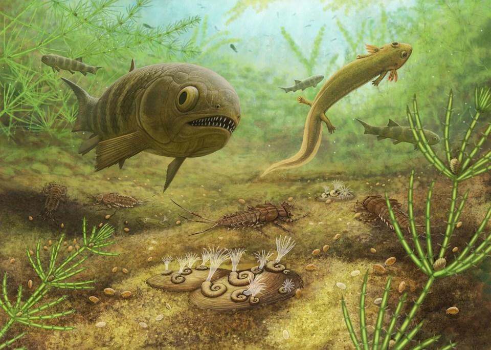 Учёные выяснили, кто населял сибирские озёра 250 миллионов лет назад