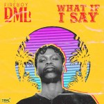 Download mp3 Fireboy DML – What If I Say