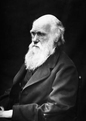 Disney planeja filme de aventura sobre Charles Darwin