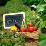 Produkty bio (organiczne)