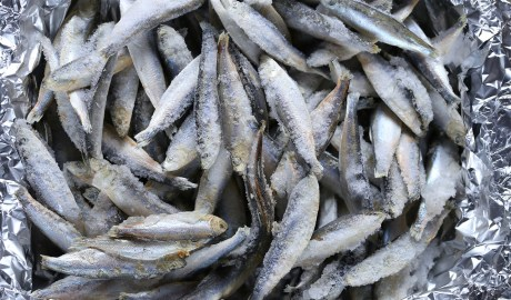 Mrożone ryby. Sprawdź jak rozmrozić rybę