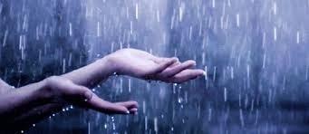 Photo of Umidade, tempo e chuva interferem na aplicação do porcelanato líquido?