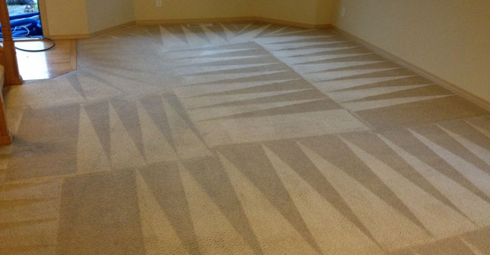 Image Result For How Much Does It Cost To Install Carpet And Pad