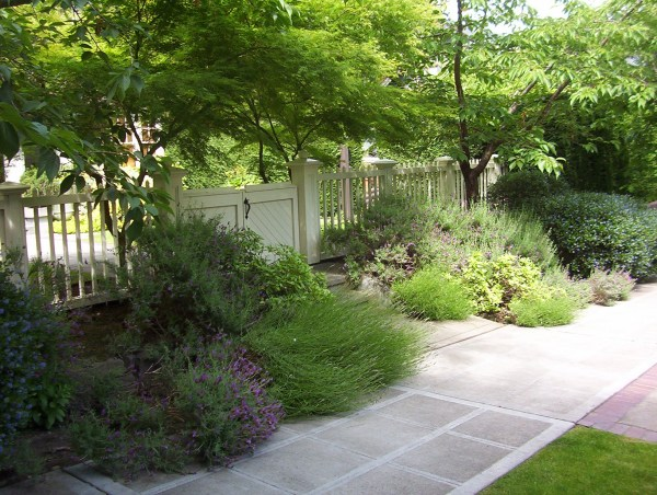 Grass Free Landscaping Ideas