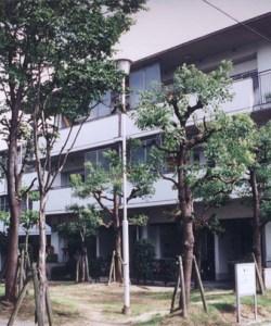 buraku-osaka-japan-ian-laidlaw-1