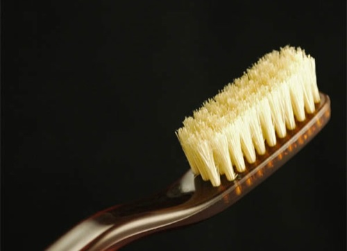Essential: Natural Bristle Toothbrush by SWISSCO [Grooming]